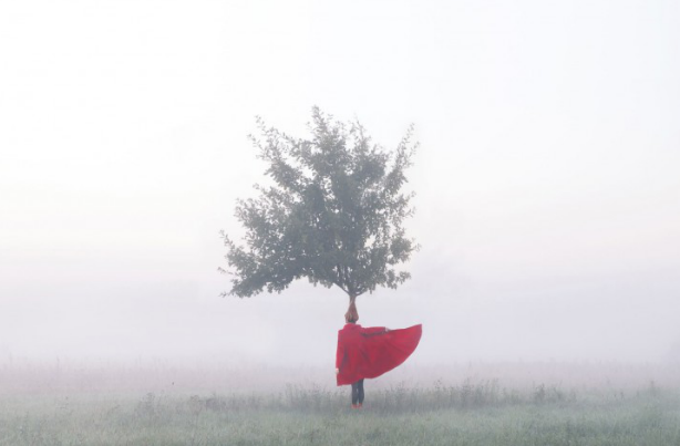 Maia Flore Situations 2012