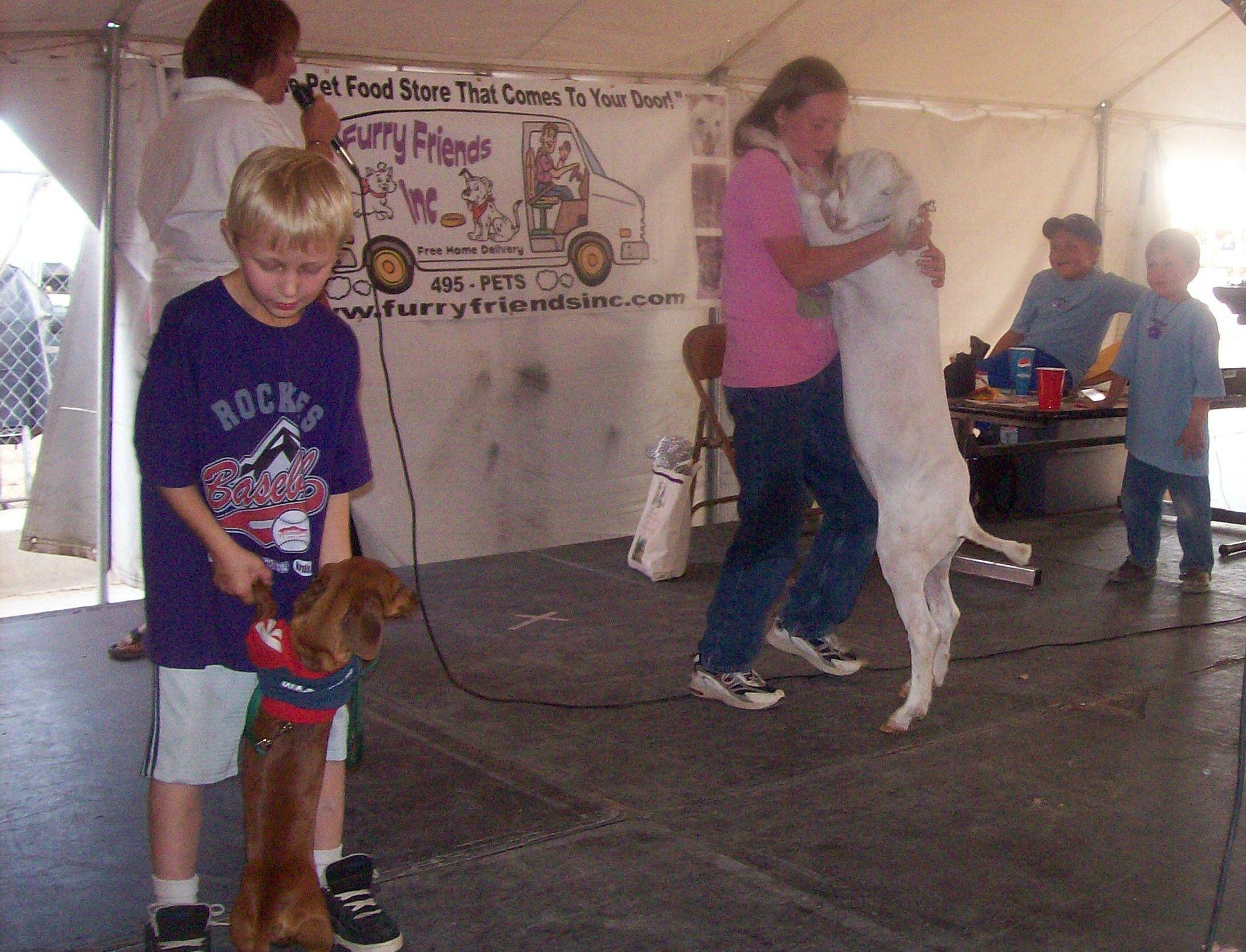 10++ El paso county animal control ideas