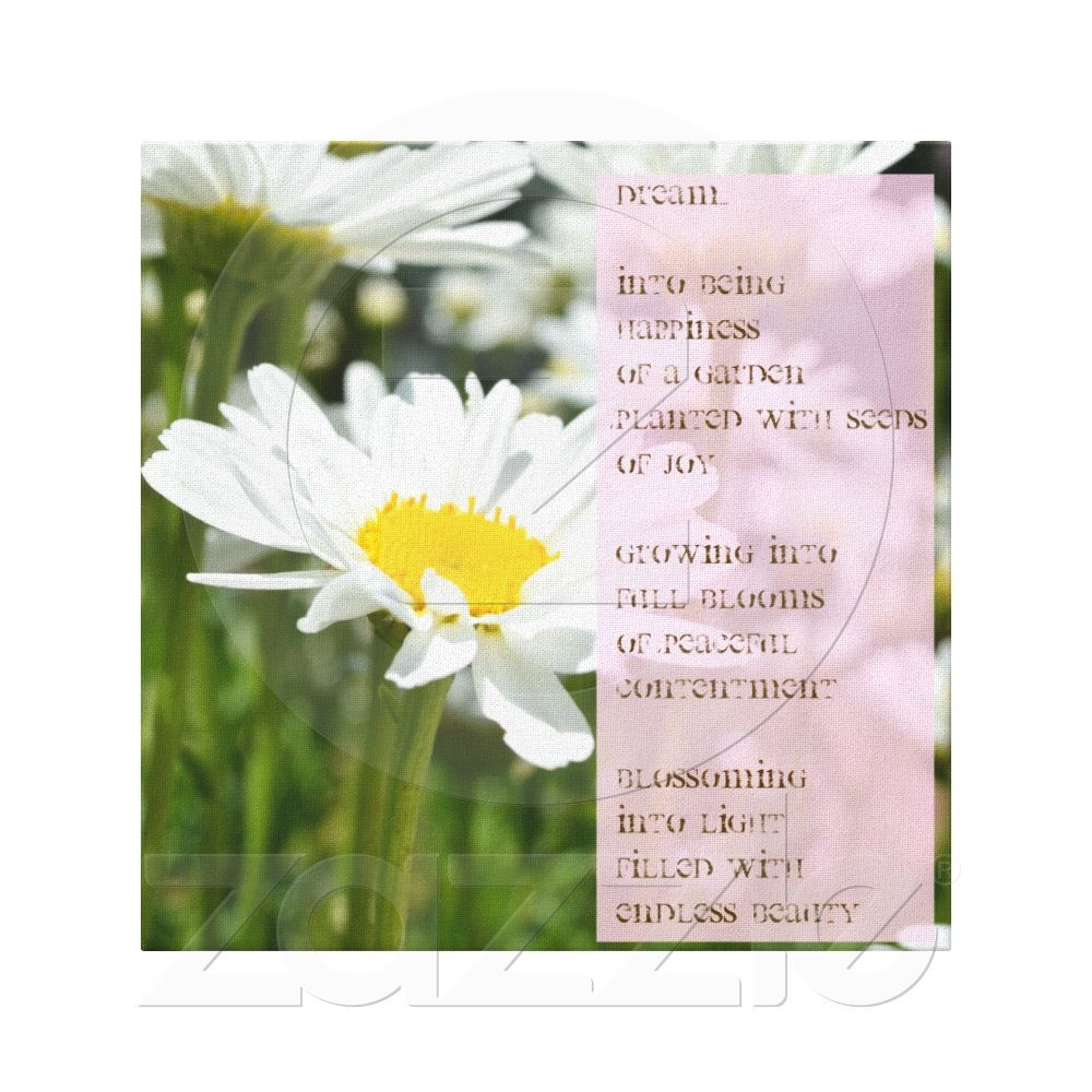 Daisy Dream Poem Canvas Print Pinterest Poem And Canvases