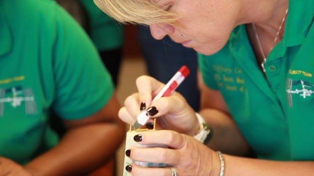 High School - Girl Scouts