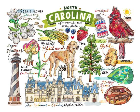 North Carolina Print State Symbols Illustration State Art