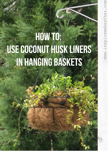 222900fd722efb70a655c99814dc35c3 - How To Use Coconut Coir In Gardening