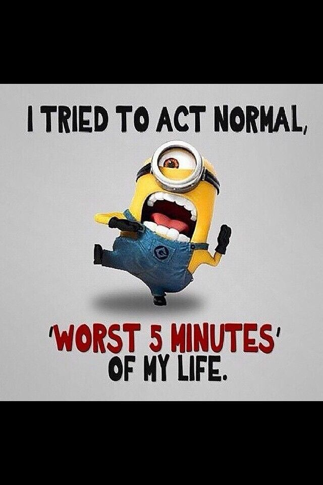 minion acting normal minions normal happynewyear 2015