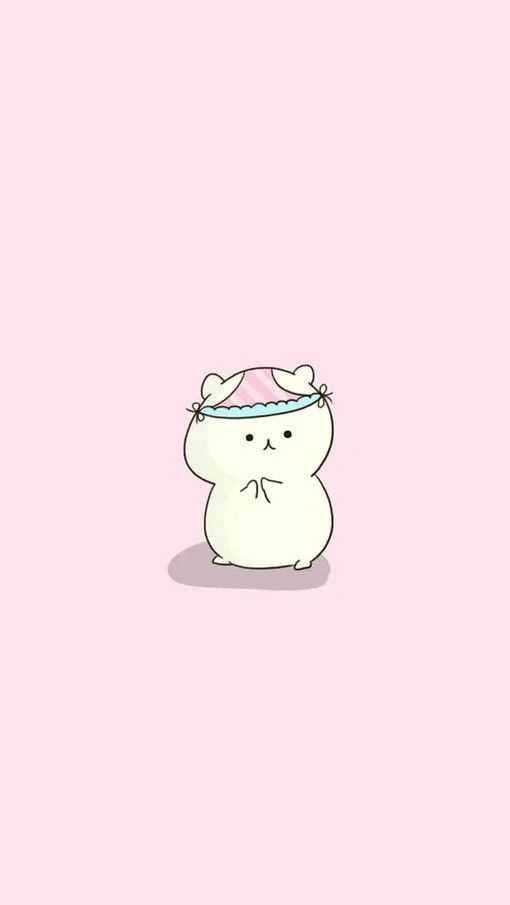 Pin By Yoon On K Waii Stuffu Hamster Wallpaper Iphone Wallpaper Animal Wallpaper