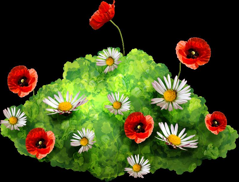 Картинки цветы на поляне для детей, картинки надписью