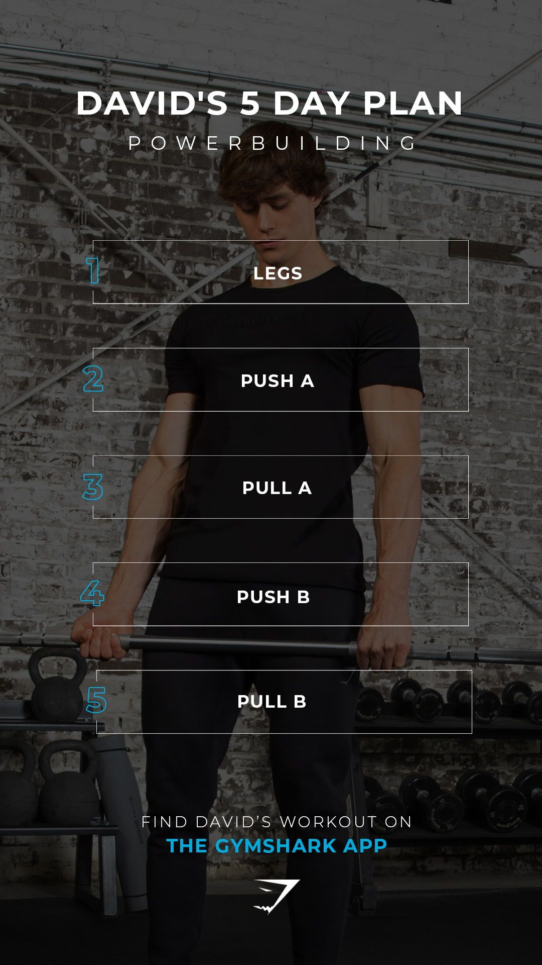 David's 5 Day Plan, powerbuilding. Train with David on the