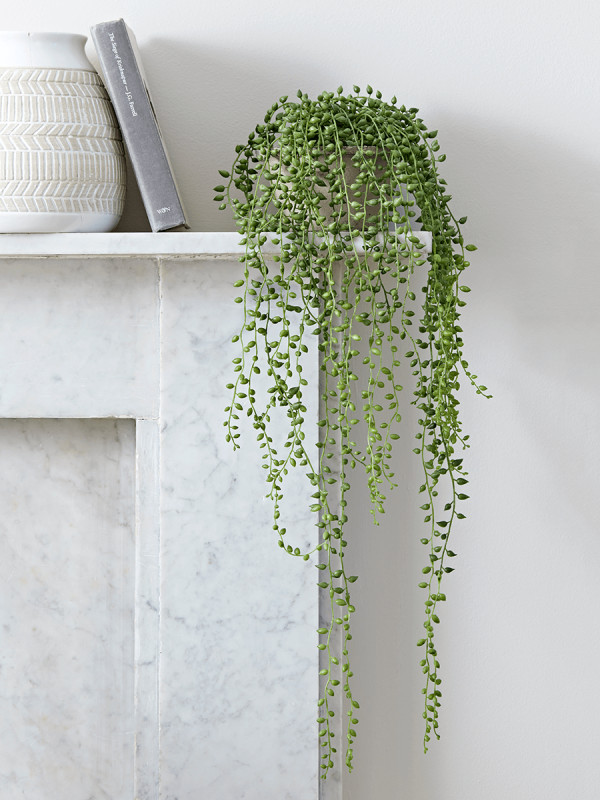 NEW Faux Potted String of Pearls - Faux Flowers & Plants - Decorative Home…