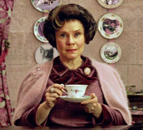 Harry Potter Literal Book Titles Laughing So Hard Dolores Umbridge Rowling Harry Potter Harry Potter Wiki