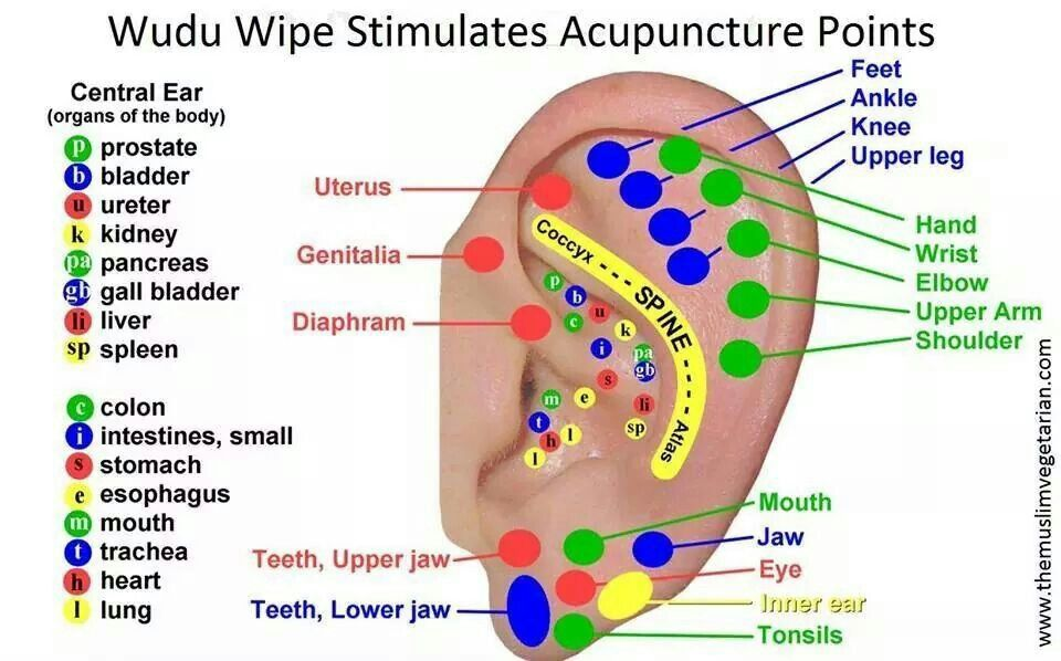 Wudu And Acupuncture Points In Fact Pinterest Reflexology