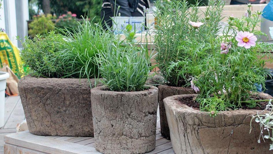 service pflanzt pfe aus erdbeton beton deko pinterest zdf de pflanzt pfe und. Black Bedroom Furniture Sets. Home Design Ideas