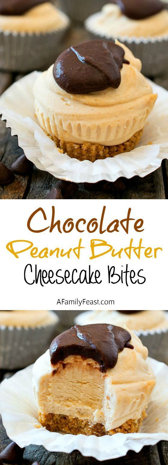 Peanut Butter Cheesecake Bites Chocolate Peanut Butter Cheesecake Bites - THIS is the dessert that everyone will keep talking about! So incredibly good!Chocolate Peanut Butter Cheesecake Bites - THIS is the dessert that everyone will keep talking about! So incredibly good!