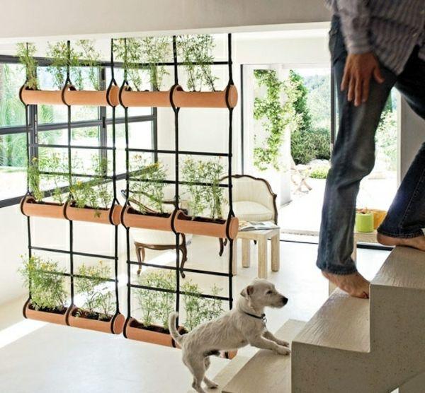 raumteiler ideen gardine hängepflanzen grün