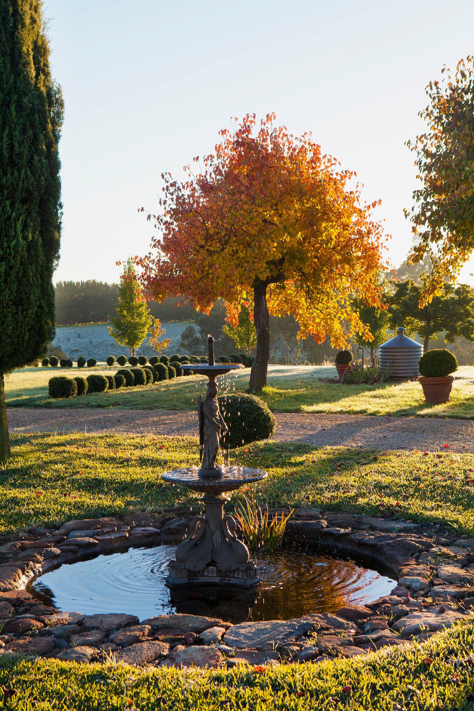 A Country Garden Ablaze With Fiery Colour | Photo | Pinterest | Gardens