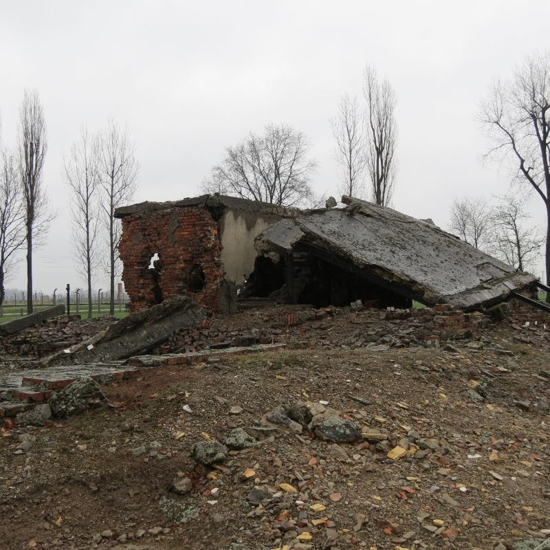 coal bunker ruins amidst the ruins of crematorium II in Birkenau.  This is my picture.
