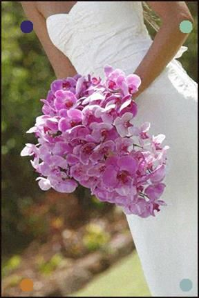 Best Radiant Orchid Wedding Ideas With Images Orchid 400 x 300