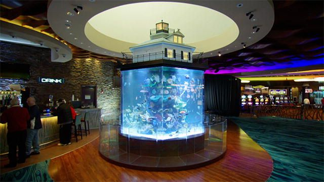 Tanked 136698944717214043300401197 tanked wind creek for Fish hotel tank