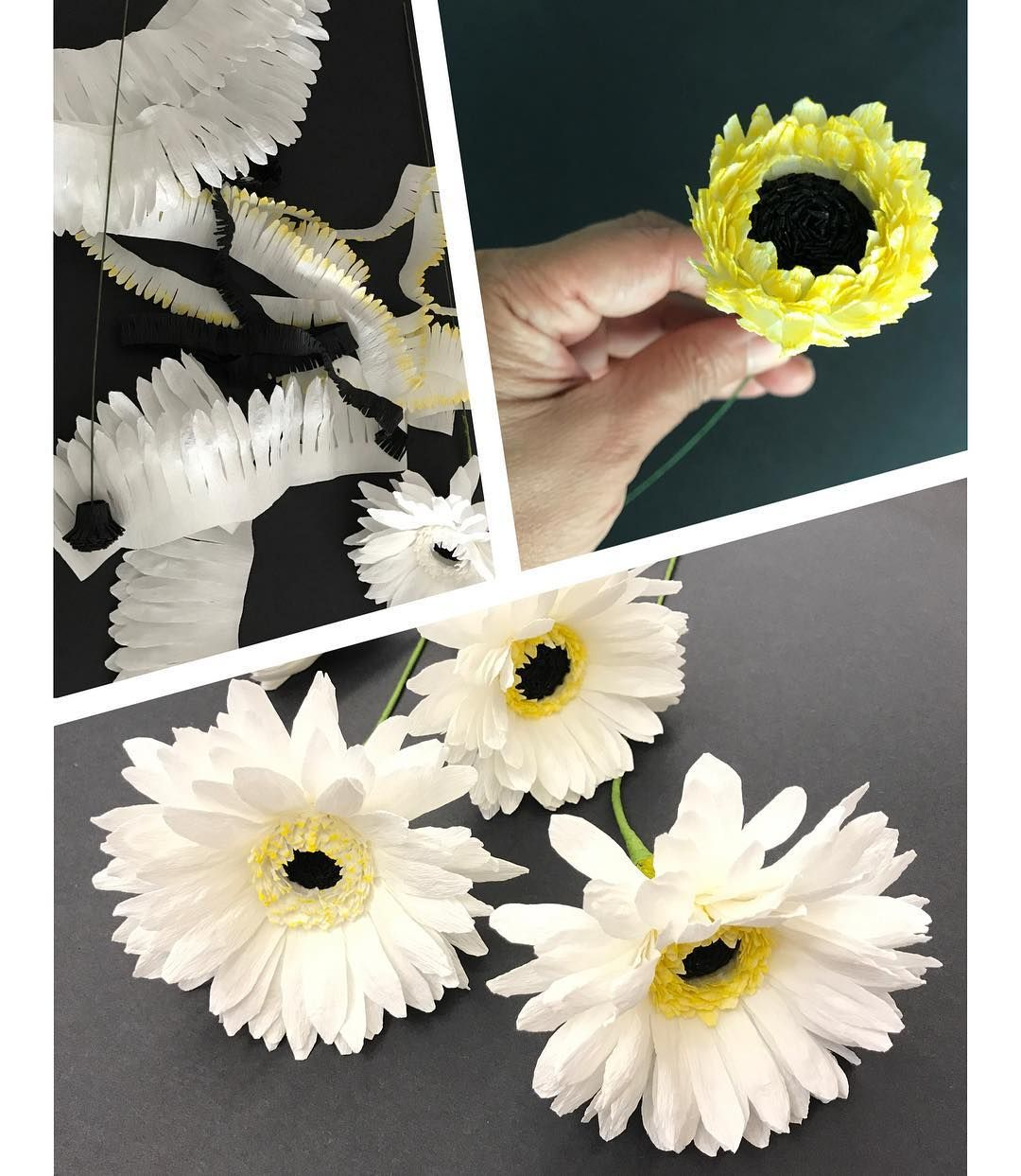 likes comments paper flowers singapore paperflowerssg on