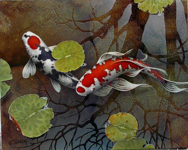 I would love to own one of terry gilecki 39 s amazing koi for Koi fish paintings prints