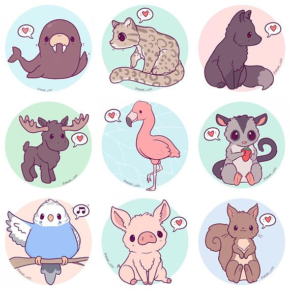 Kawaii animals stickers owl snow leopard shiba fox husky peacock corgi sloth fennec penguin red panda and more 3