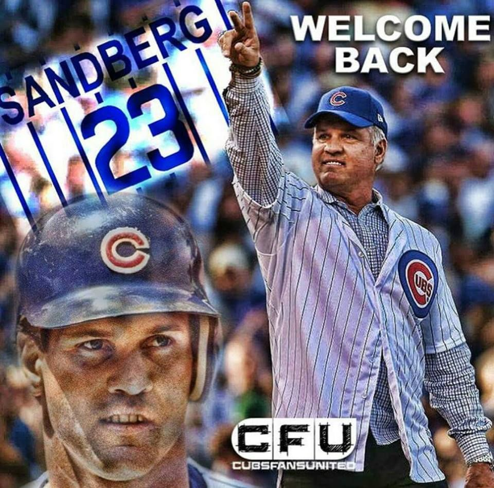 The Man Chicago Cubs Fans Chicago Cubs Baseball Chicago Cubs Baby