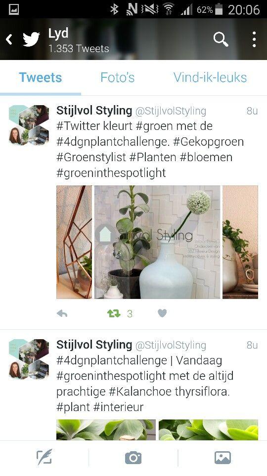 For nice trendy idea #4dgnplantchallenge