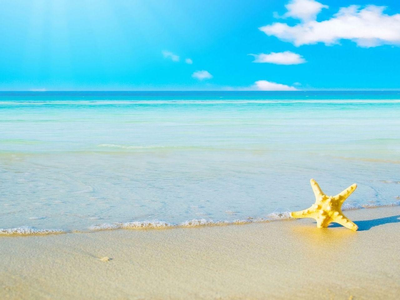 Star Yellow Sea Hd Desktop Backgrounds Wallpapers #12049020976
