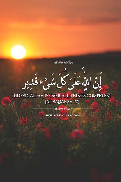 Image Result For Wallpaper Quotes Al Quran