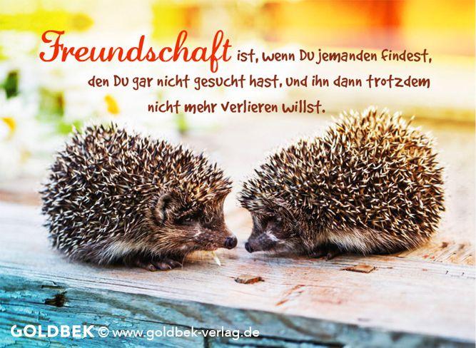 Postkarten   Freundschaft ist  | Sprüche | Male, female animals