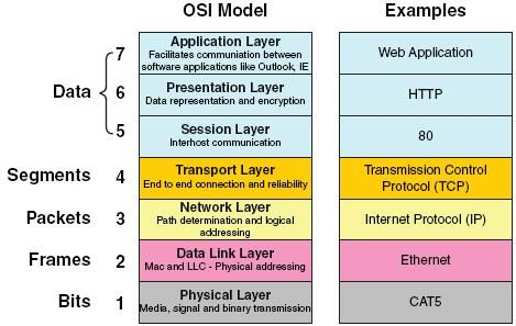 17 Best images about OSI on Pinterest | Data processing ...