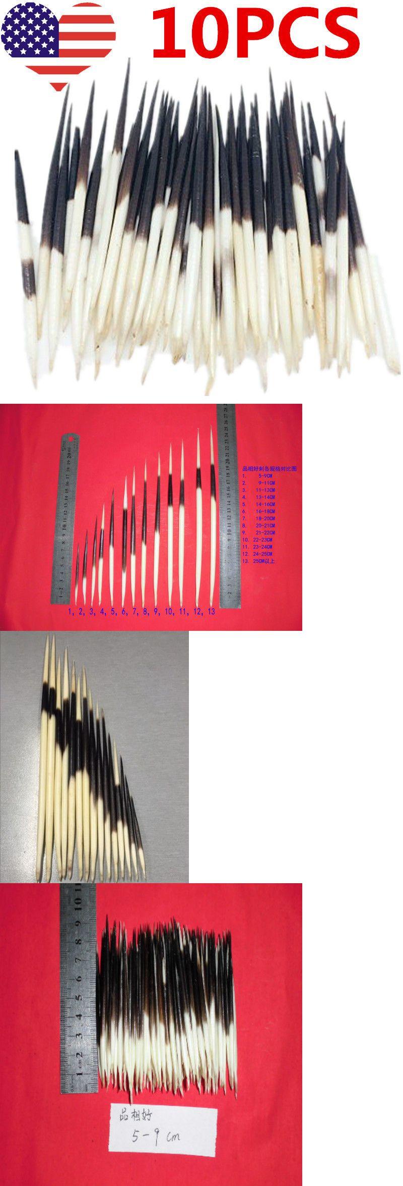 10x Porcupine Quills Jewelry Craft Hair Stick Weaving Beading Assorted Craft DIY