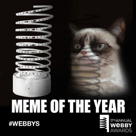 The Meteoric Rise Of Grumpy Cat Grumpy Cat Grumpy Cat Meme Grump Cat