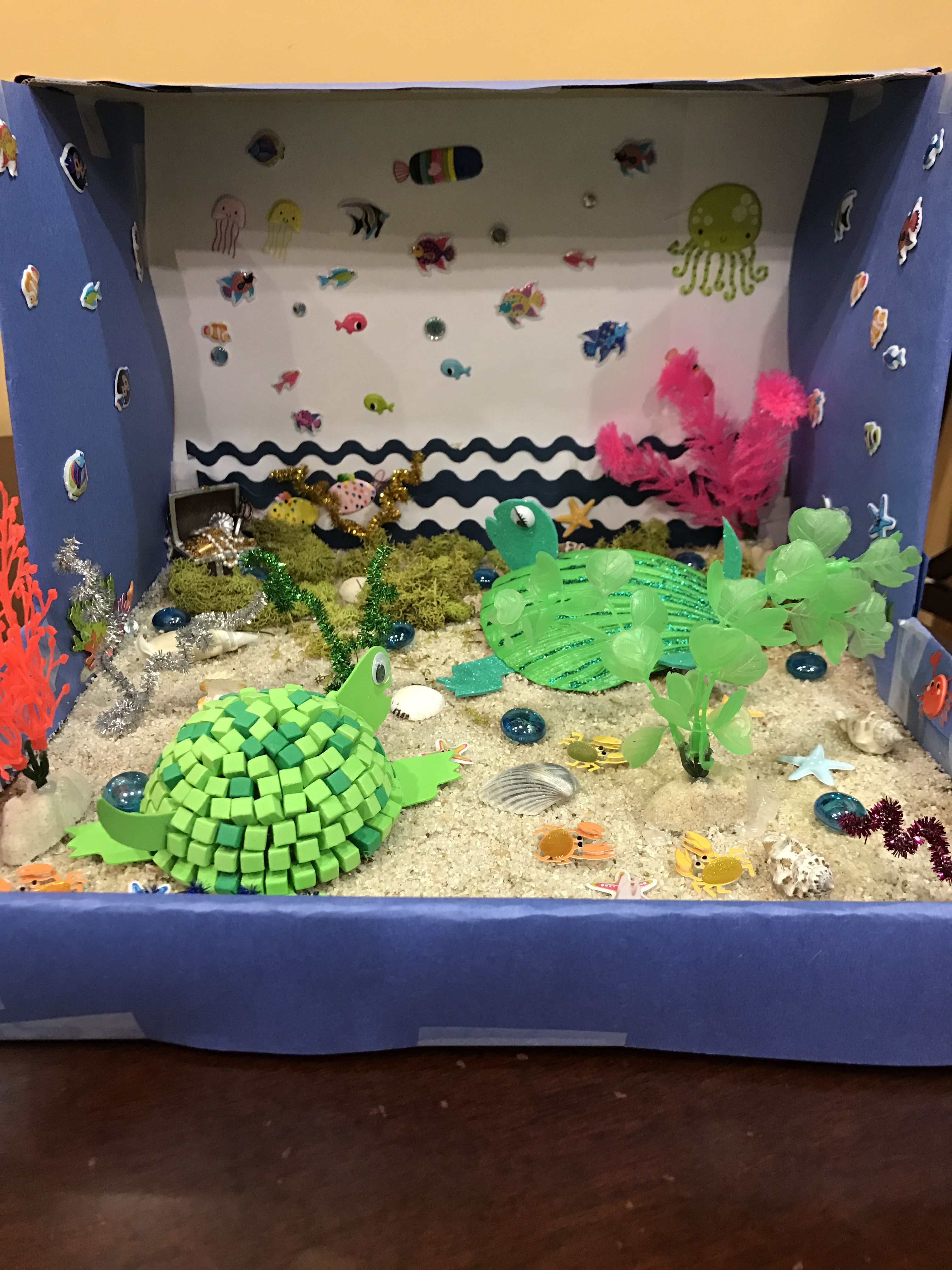 #SeaTurtle #Diorama #SchoolProject #Ocean #Turtle #Habitat ... - photo#29