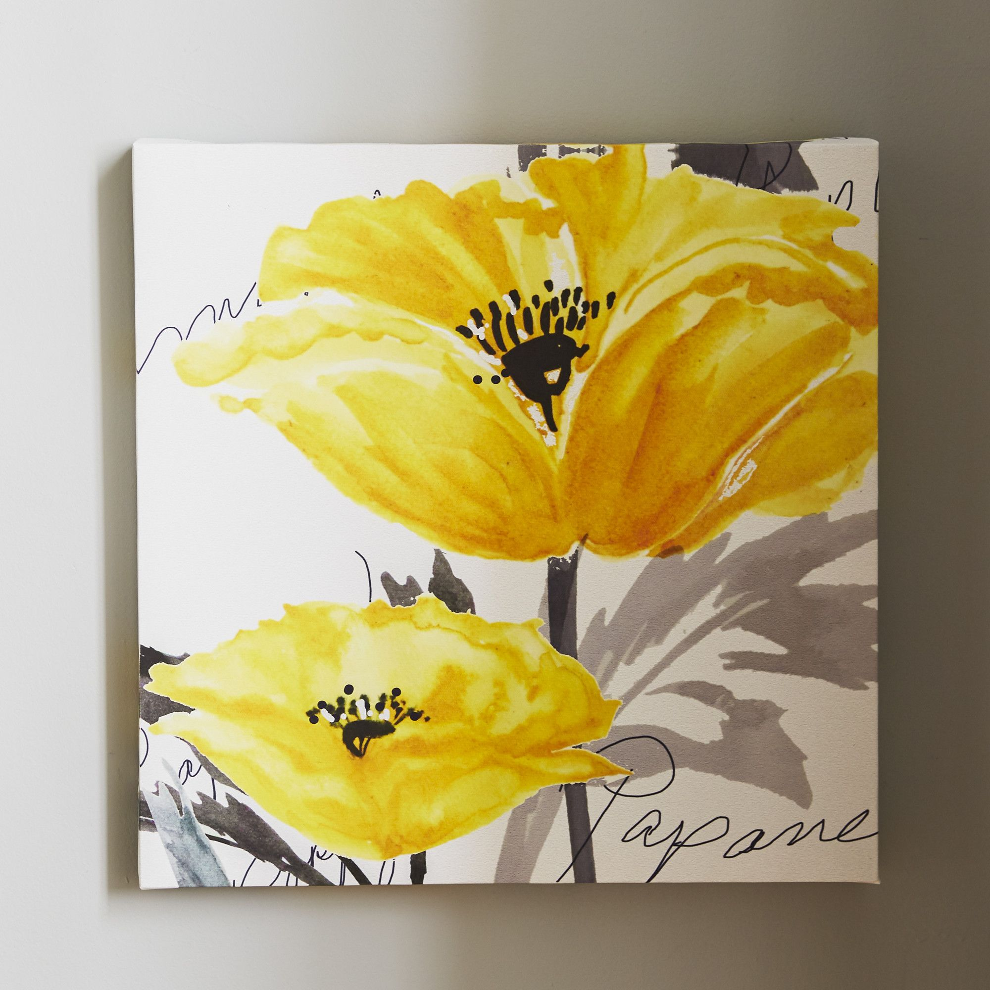 Poppy Canvas Print | AA_Flowers Yellow | Pinterest | Canvases ...