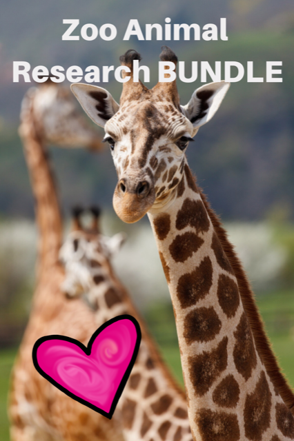 Zoo Animal Research BUNDLE Science Mixed w/ Authentic