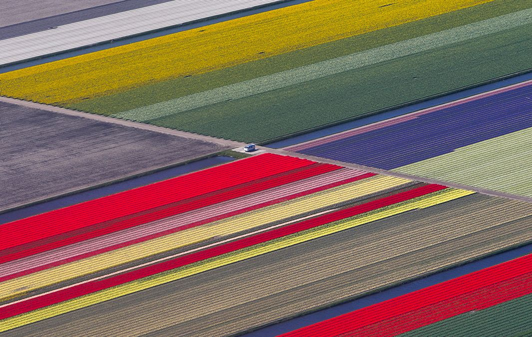 An aerial view of flower fields is seen near the Keukenhof park, also known as the Garden of Europe, in Lisse, Netherlands, on April 15, 2015. Keukenhof, which employs some 30 gardeners, is considered to be the world's largest flower garden, displaying millions of flowers every year.