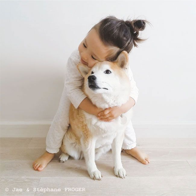 パリの柴犬とちいさなパリジェンヌのしあわせな毎日 写真特集 朝日新聞デジタル w 柴犬 犬 画像 犬 赤ちゃん