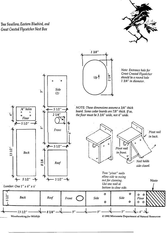 help a habitat - build a bird house - bluebird and tree swallow nest