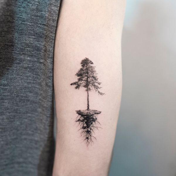 Best Pine Tree Tattoos And Meanings 2018 Tatoo Tattoos Pine
