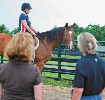 Study Trainers Consistently Evaluate Ridden Horse Behavior - Horse Sales Contracts