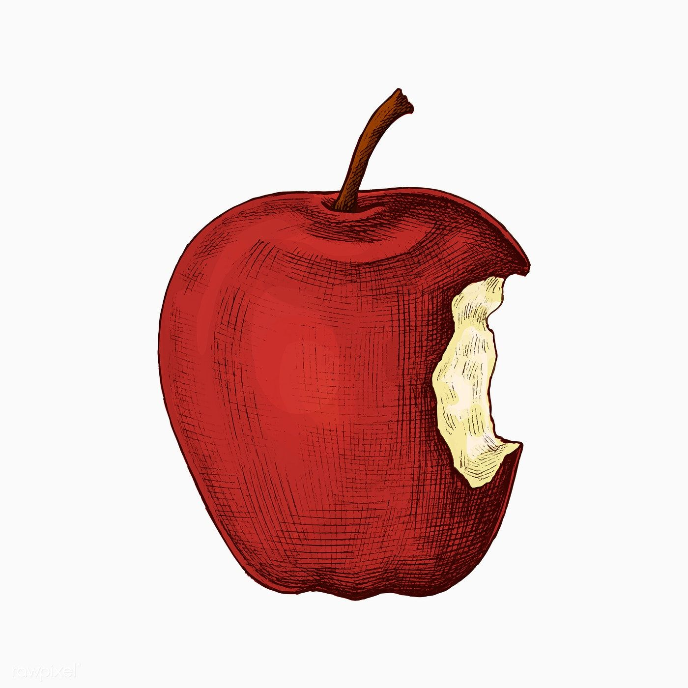 Red Ripe Bitten Apple Vector Free Image By Rawpixel Com Sasi Vector Vectorart Healthyfood Foodanddrink Foo Apple Vector Apple Illustration Vector Free