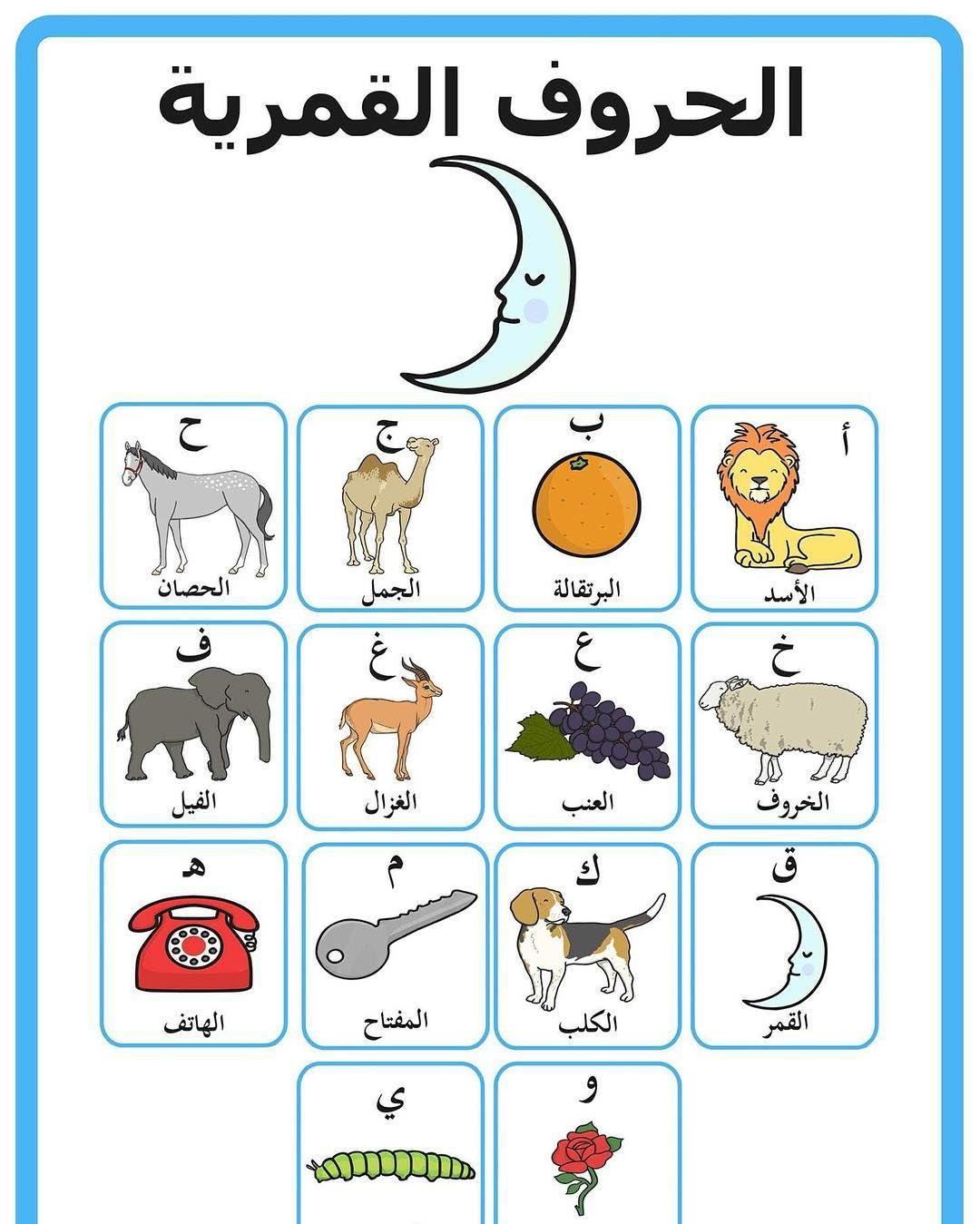 59 Likerklikk 1 Kommentarer المنهج الوطني الجديد Ykuwait Net2 Pa Instagram هيا نتعرف على الحروف القمرية Learning Arabic Arabic Kids Arabic Lessons