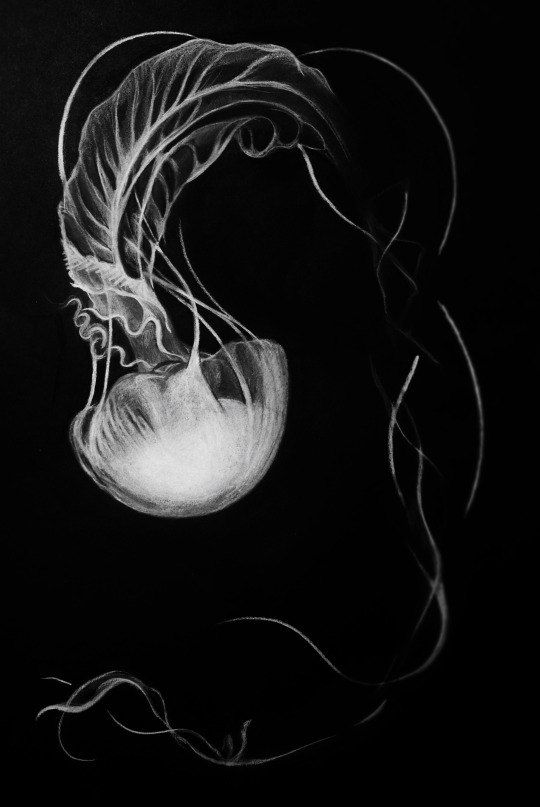 Jellyfish Art Print Jellyfish Art Prints /& Posters Sea Creature White Charcoal Drawing Ocean Art Decorative Wall Art for Your Home