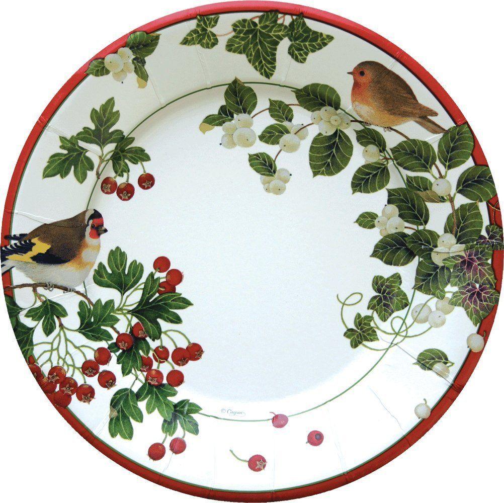 Amazon.com Entertaining with Caspari Winter Birds Paper Salad/Dessert Plates Pack  sc 1 st  Pinterest & Amazon.com: Entertaining with Caspari Winter Birds Paper Salad ...