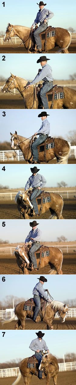 Flex Your Horse from the Saddle. Its very important!