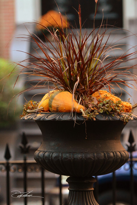 Rutland Suare / South End / Boston / David Fuller Photo | David ...
