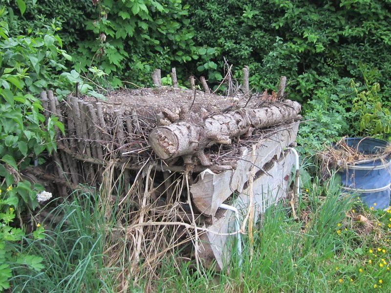 Mein Naturgarten Der Kleingarten Als Biotop Naturgarten Garten Kleiner Garten