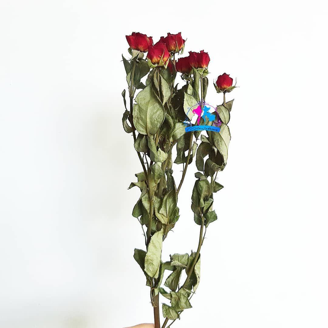 Pin On Flowerarrangements