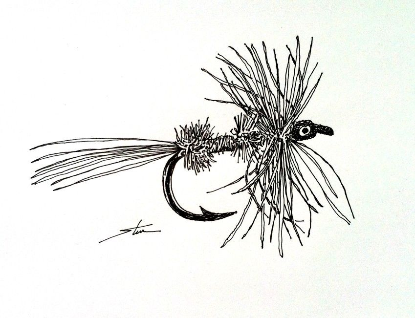 Fly fishing flies ink drawing quick sketch 1 day