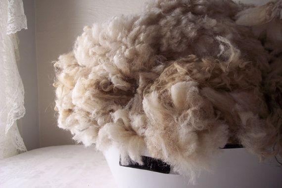 PeterPaulandLarry on Etsy: Icelandic raw wool