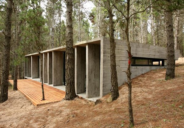 Amazing Concrete House Plan For A Rustic Forest Home In Argentina Concrete House Concrete Architecture Architecture